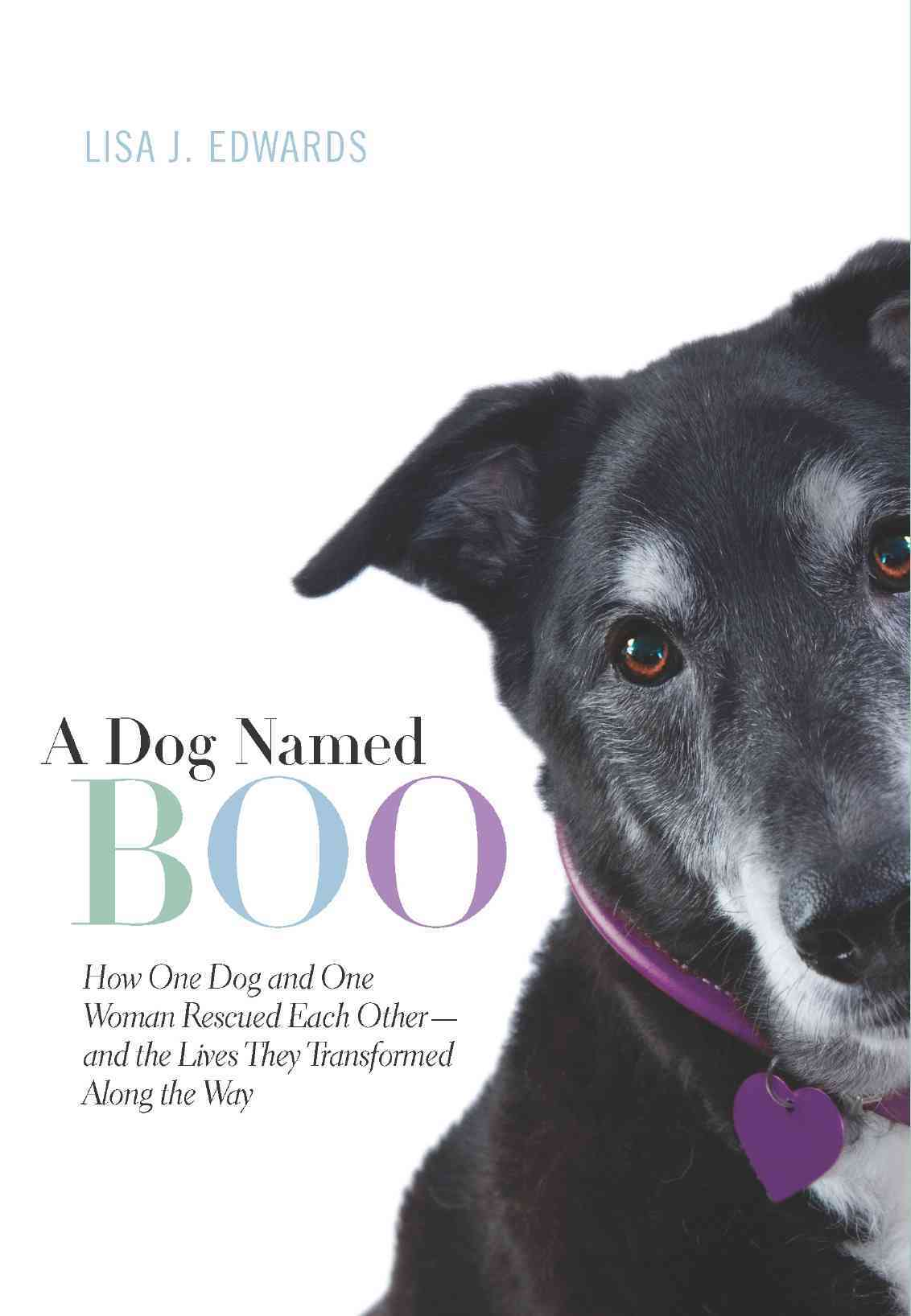 A Dog Named Boo: How One Dog and One Woman Rescued Each Other - and the Lives They Transformed Along the Way (Hardcover)