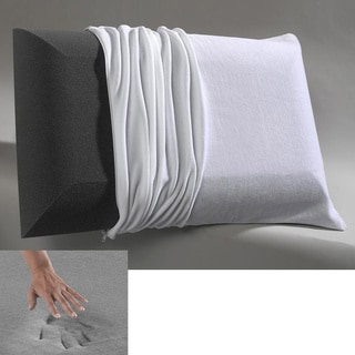 Beautyrest Charcoal Odor Control Memory Foam Pillow