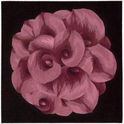 Nourison Hand Tufted Purple Floral Art Wool Rug (3' x 3')