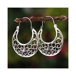 Sterling Silver 'Climbing Vines' Earrings (Peru)