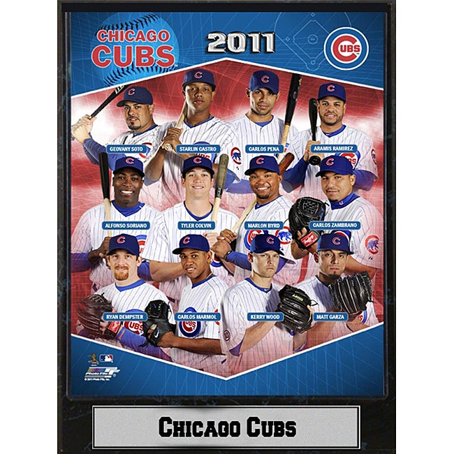 2011 Chicago Cubs 9 x 12 Stat Plaque
