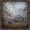 Dawne Polis 'Seen Better Days' Framed Print