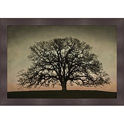 David Lorenz Winston 'Majestic Oak' Framed Print Art
