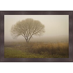 David Lorenz Winston 'Tree in Field ' Framed Print Art