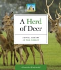 A Herd of Deer: Animal Groups in the Forest (Hardcover)