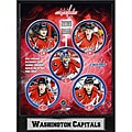 Washington Capitals 2010 Stat Plaque