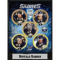Buffalo Sabres 2010 Stat Plaque