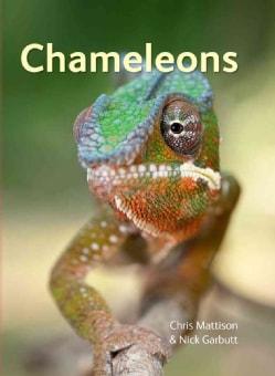 Chameleons (Hardcover)