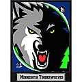 Minnesota Timberwolves 2011 Logo Plaque
