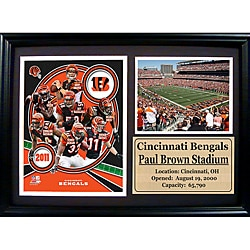 Cincinnati Bengals 2011 Photo Stat Frame