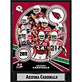 Arizona Cardinals 2011 Plaque