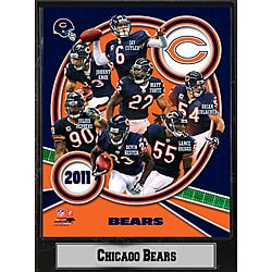 Chicago Bears 2011 Plaque
