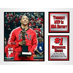 Chicago Bulls Derrick Rose Deluxe Stat Matted Photo