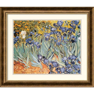 Vincent van Gogh 'Irises In The Garden' Framed Art Print