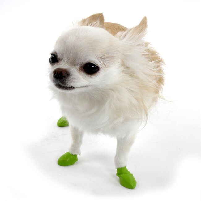 Pawz Tiny Green Dog Booties (Pack of 12)