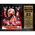 Chicago Bulls Michael Jordan Stat Plaque