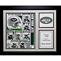New York Jets 2010 Deluxe Stat Frame