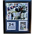 Dallas Cowboys Marion Barber Deluxe Stat Frame