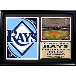 Tampa Bay Rays Team Logo Photo Stat Frame