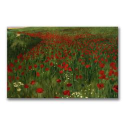 Pal Szinyei Merse 'The Poppy Feild, 1896' Canvas Art