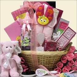 Gift Sets  Baby Girl on Congratulations Baby Girl Gift Basket   Overstock Com Shopping   The