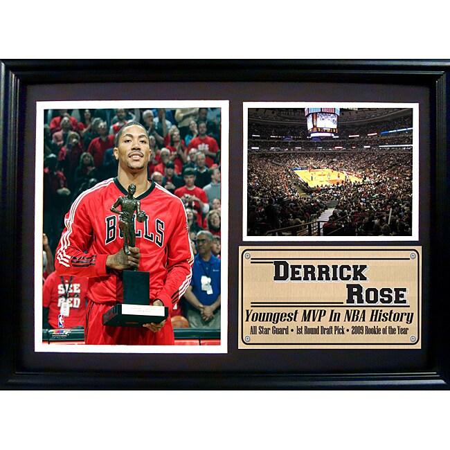 Chicago Bulls Derrick Rose Photo Stat Frame