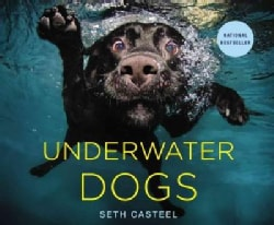 Underwater Dogs (Hardcover)