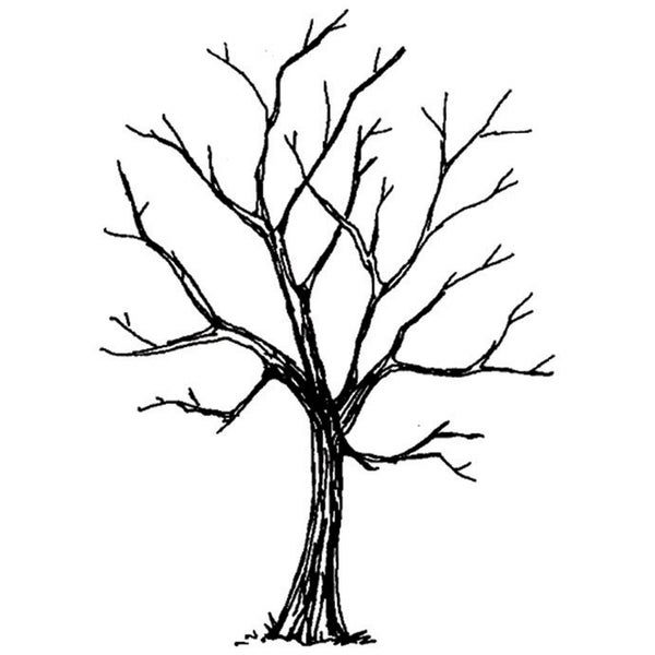 Art Impressions Wilderness Series 'Tree' Cling Rubber Stamp