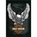 Harley Davidson - Eagle' Framed Art Print with Gel Coated Finish
