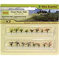 Wee Scapes Miniature Flower Plants (Pack of 12)
