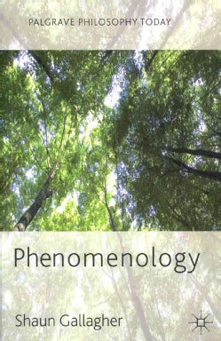 Phenomenology (Paperback)