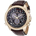 Citizen Eco-Drive Men's Perpetual Calendar Watch