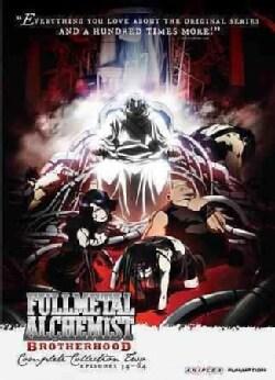 FMA Brotherhood: Collection Two (DVD)