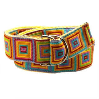 Kaleidoscope Kids D-Ring Belt