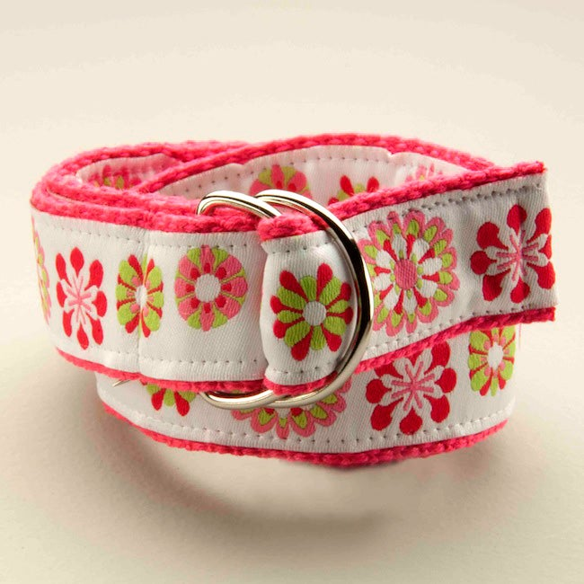 Crazy Daisy Kids D-Ring Belt
