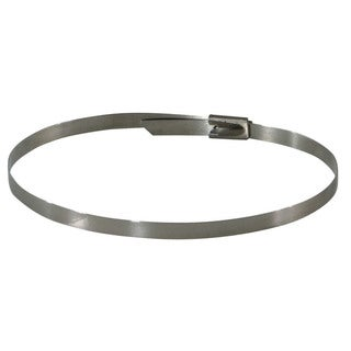 Stainless Steel Cable Zip Ties (Case of 125)