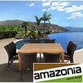 Monaco 9-piece Teak/ Synthetic Wicker Dining Set