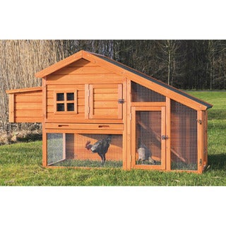 Chicken Coop With A View