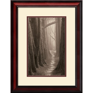 Paul Kozal 'Cypress Trail' Framed Matted Art Print