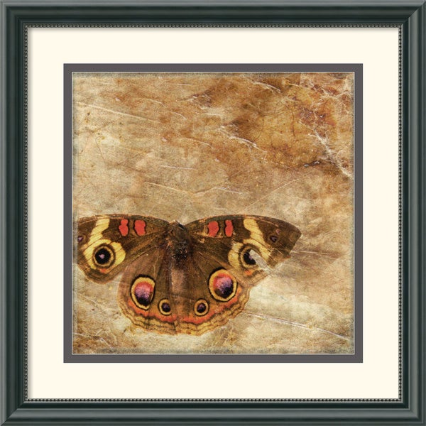 Susan Friedman Moth Framed Art Print
