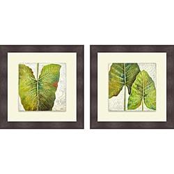 Patricia Pinto 'Mafafa I & II' Framed Print