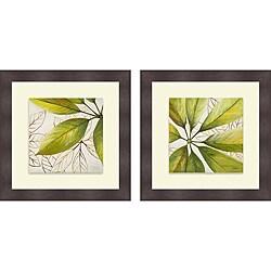 Patricia Pinto 'Fresh Leaves I & II' Framed Print