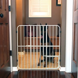 Carlson Extra Tall Tuffy Metal Expandable Pet Gate