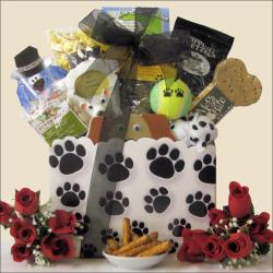 You and Your Pooch: Pet Dog Gift Basket
