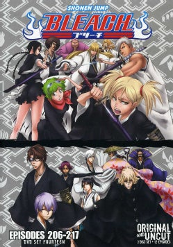 Bleach Box Set 14 (Uncut) (DVD)