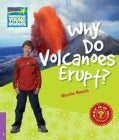 Why Do Volcanoes Erupt? Level 4 Factbook (Paperback)