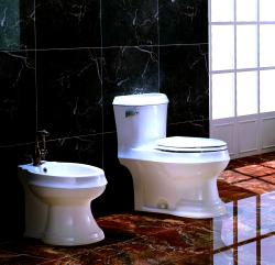 'OLEAN' Contemporary European Toilet with Single Flush and Soft Closing Seat