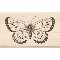 Inkadinkado 'Big Butterfly' Mounted Rubber Stamp