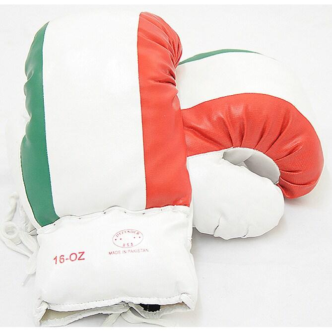 Defender 16-ounce Italian Flag Boxing Gloves