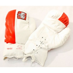 Defender 16-ounce Polish Flag Boxing Gloves